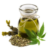 Hemp seed oil refined